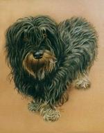bayerischer--rauhaardackel-portraitbayerischer--rauhaardackel-portrait.png